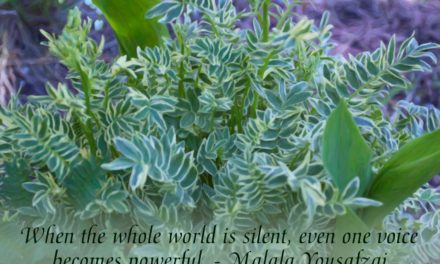 When the whole world is silent, even one voice becomes powerful. ~Malala Yousafzai