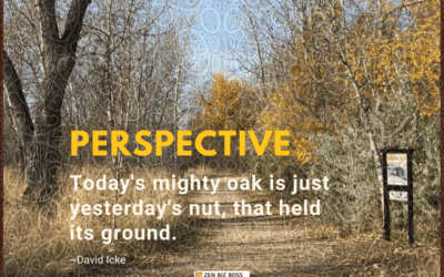 Today's mighty oak is just yesterday's nut, that held its ground. ~David Icke